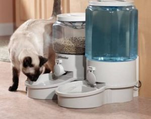 автокормушку для кошек