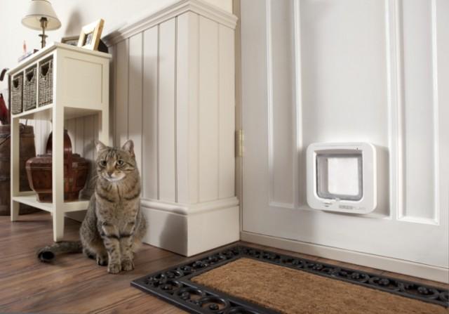 Электронная дверная заслонка для котов